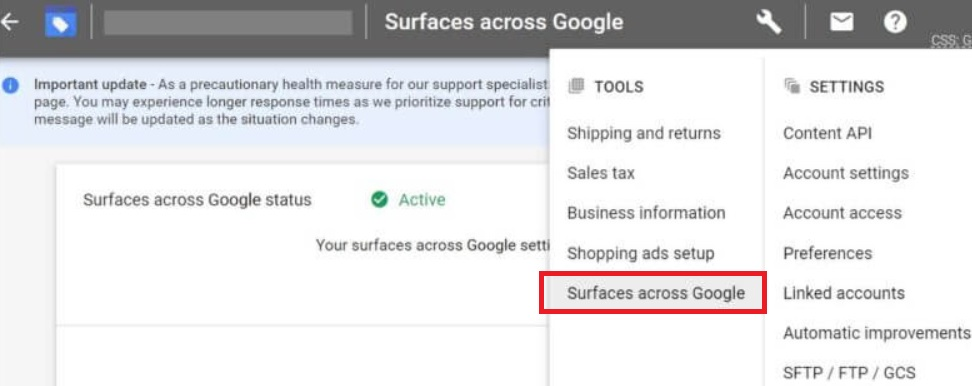 Surfaces across Google